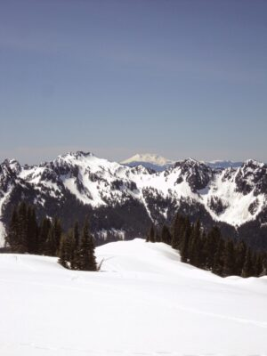 Snowy mountains and forest, a larger snowy mountain is in the background