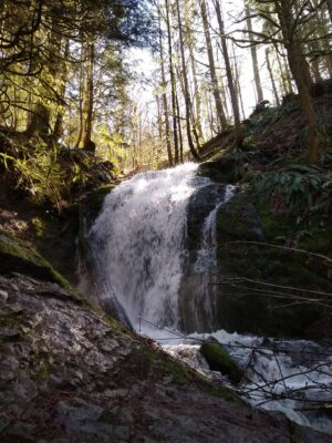 Coal Creek Falls is a beautiful winter hike near Seattle. The waterfall has more water in winter and comes down a rock face in an evergreen forest.