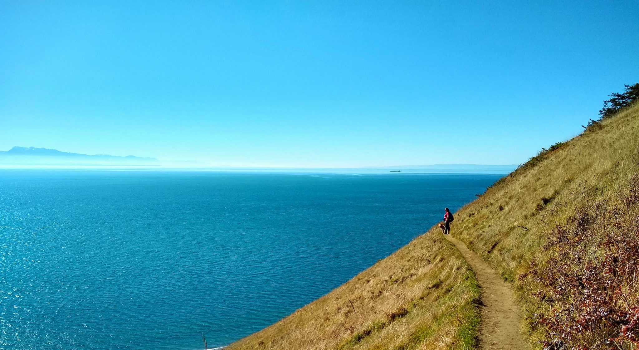 a hiker on a trail along a bluff next to an expanse of blue water on the Ebey's Landing trail, one of the best hikes in Washington