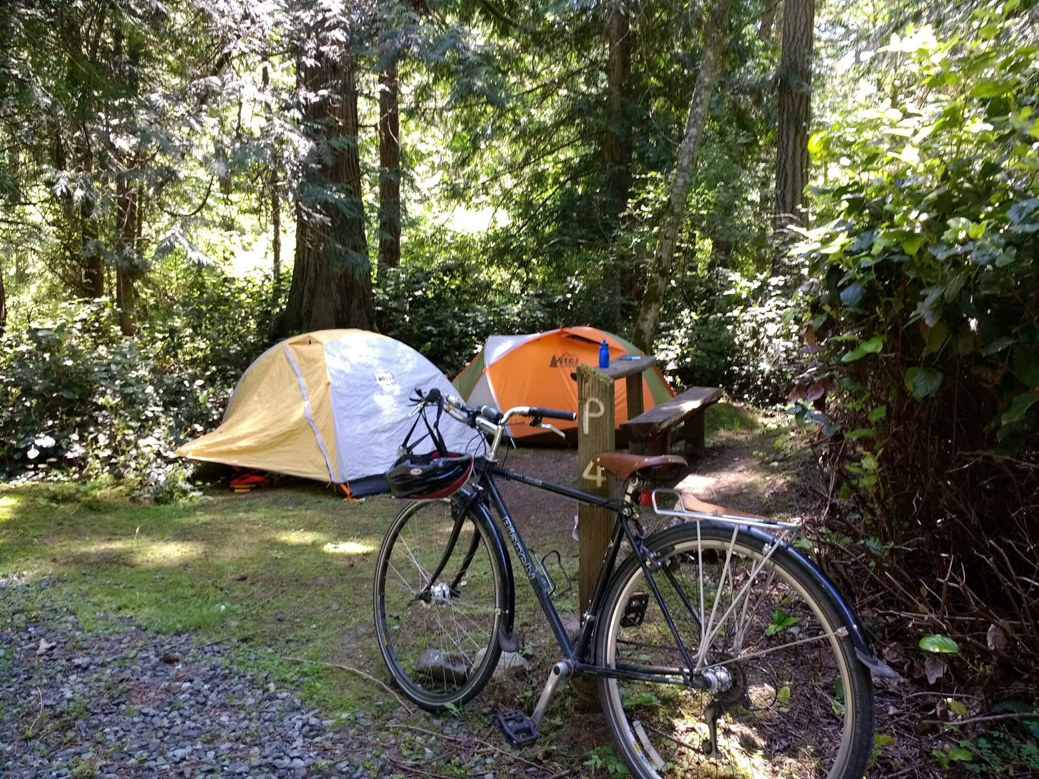 Lopez Island bike camping at Spencer Spit State park. It's a small campsite in the forest with two orange and white tents, a small bench and a bike leaning against a wooden post.