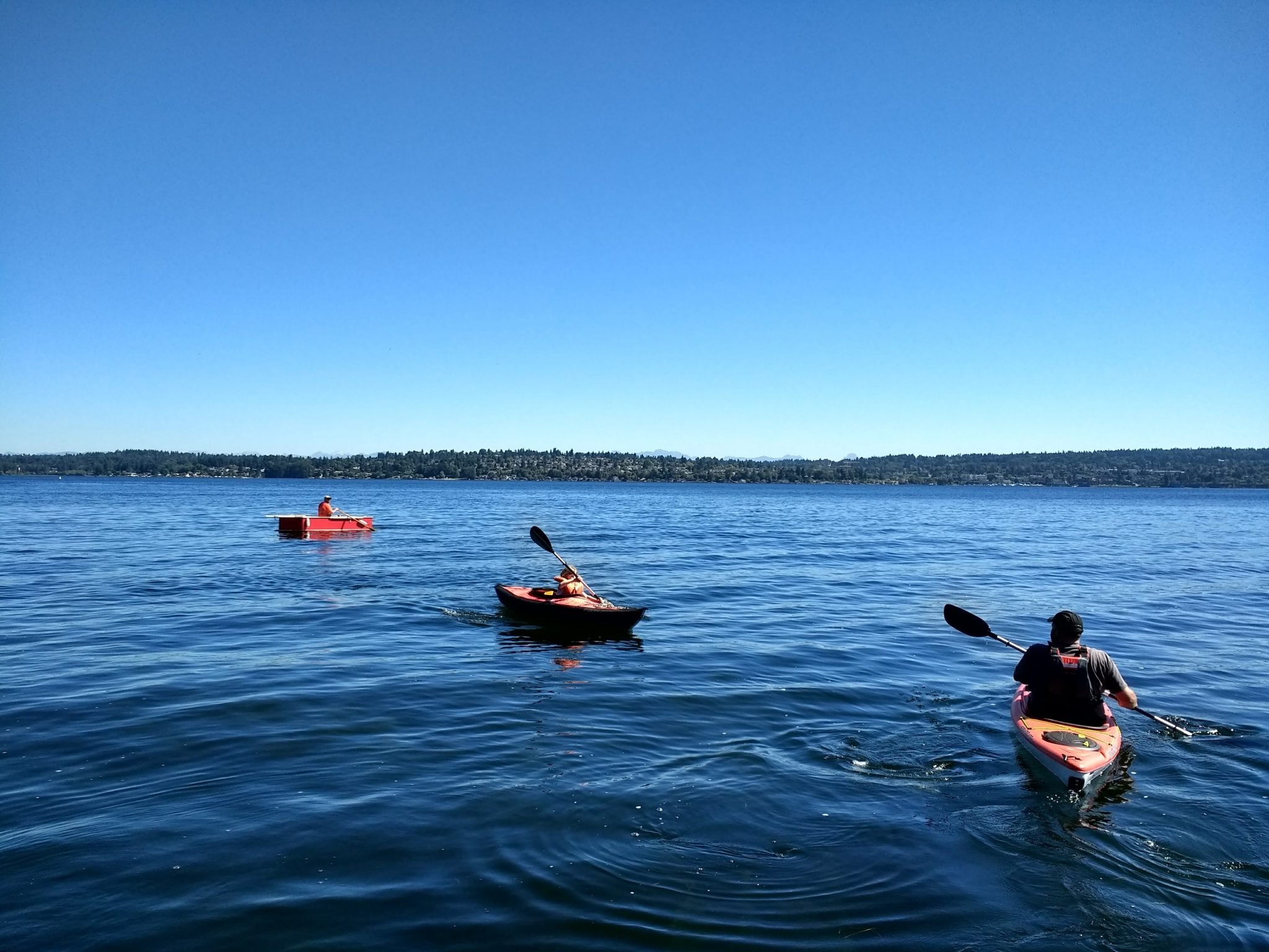Two kayakers and a rowboater are in on a lake on a sunny day. The boats are facing in different directions. There is a forested hill with houses in the background