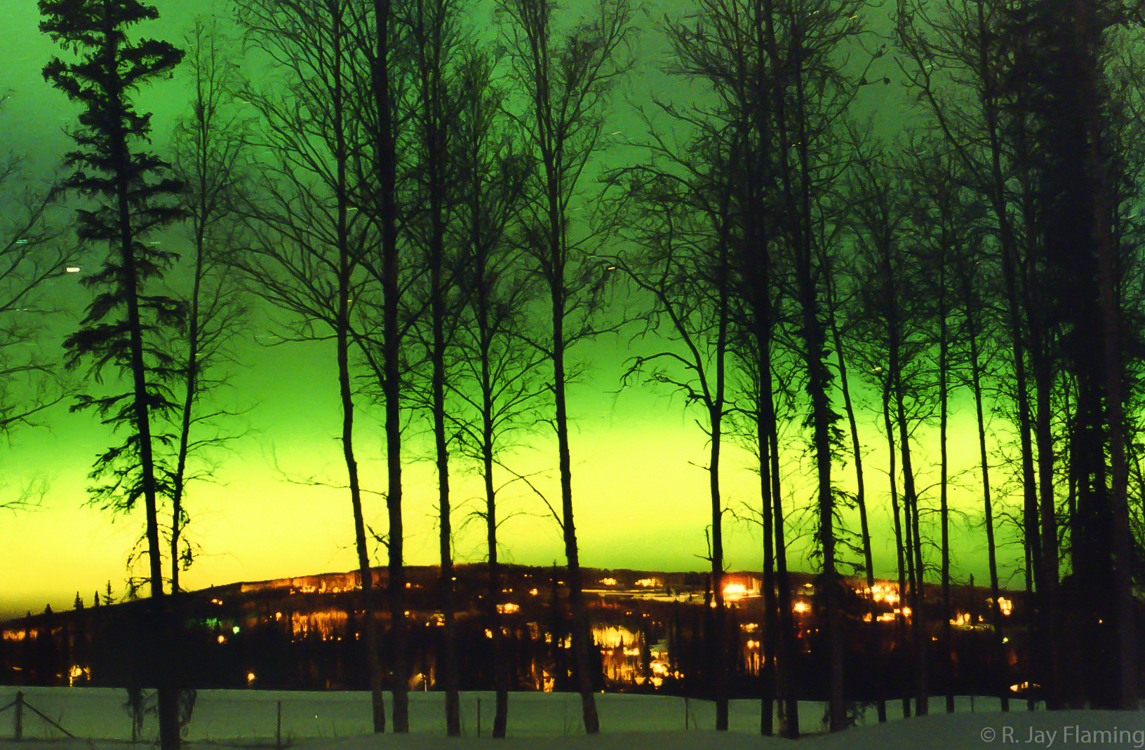 The Northern Lights in Fairbanks above a snow covered golf course in winter. Trees are silouetted in the foreground and lights from houses are seen on a hillside in the background.