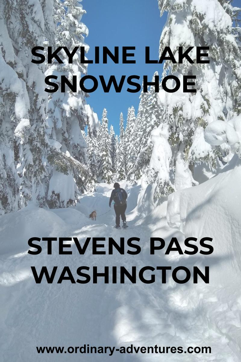 A person and a dog on a snowshoe trail. The sky is blue and they are surrounded by snow covered evergreen trees. Text reads: Skyline Lake Snowshoe Stevens Pass Washington