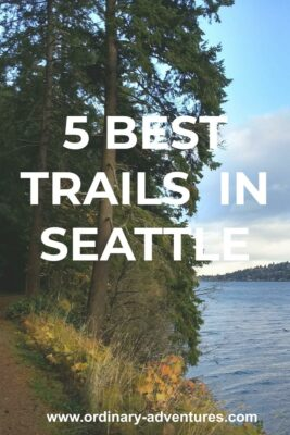 Evergreen trees along the side of a trail next to Lake Washington in Seward park. Text reads: 5 Best Trails in Seattle