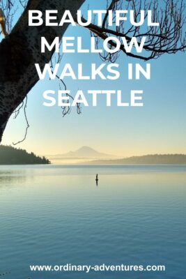 A lake with Mt Rainier's silouette at dusk. A tree is in the foreground. Text reads: Beautiful mellow walks in Seattle