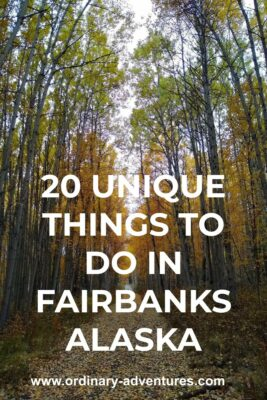Golden birch trees line a trail. Text reads: 20 unique things to do in Fairbanks Alaska
