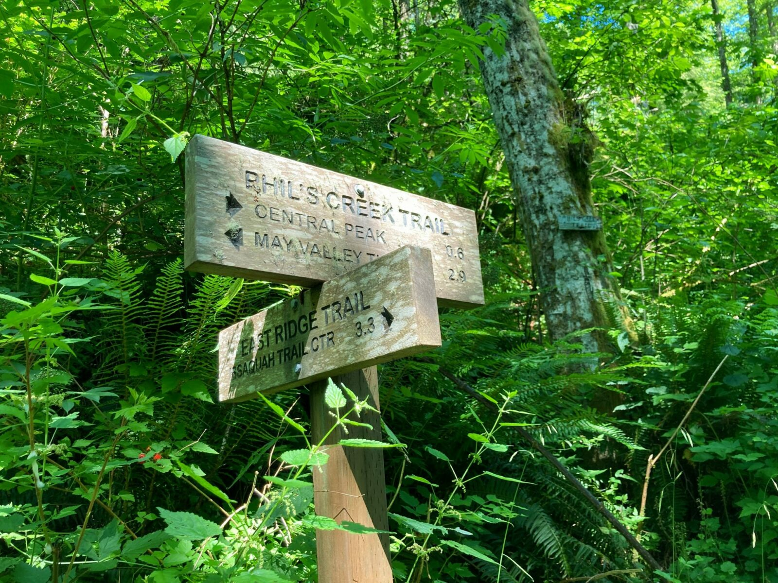 Two wooden direction trail signs on the East Ridge Trail in Squak Mountain State park. One sign points to Central Peak and May Valley Trailhead, the other points to the Issaquah Trail Center