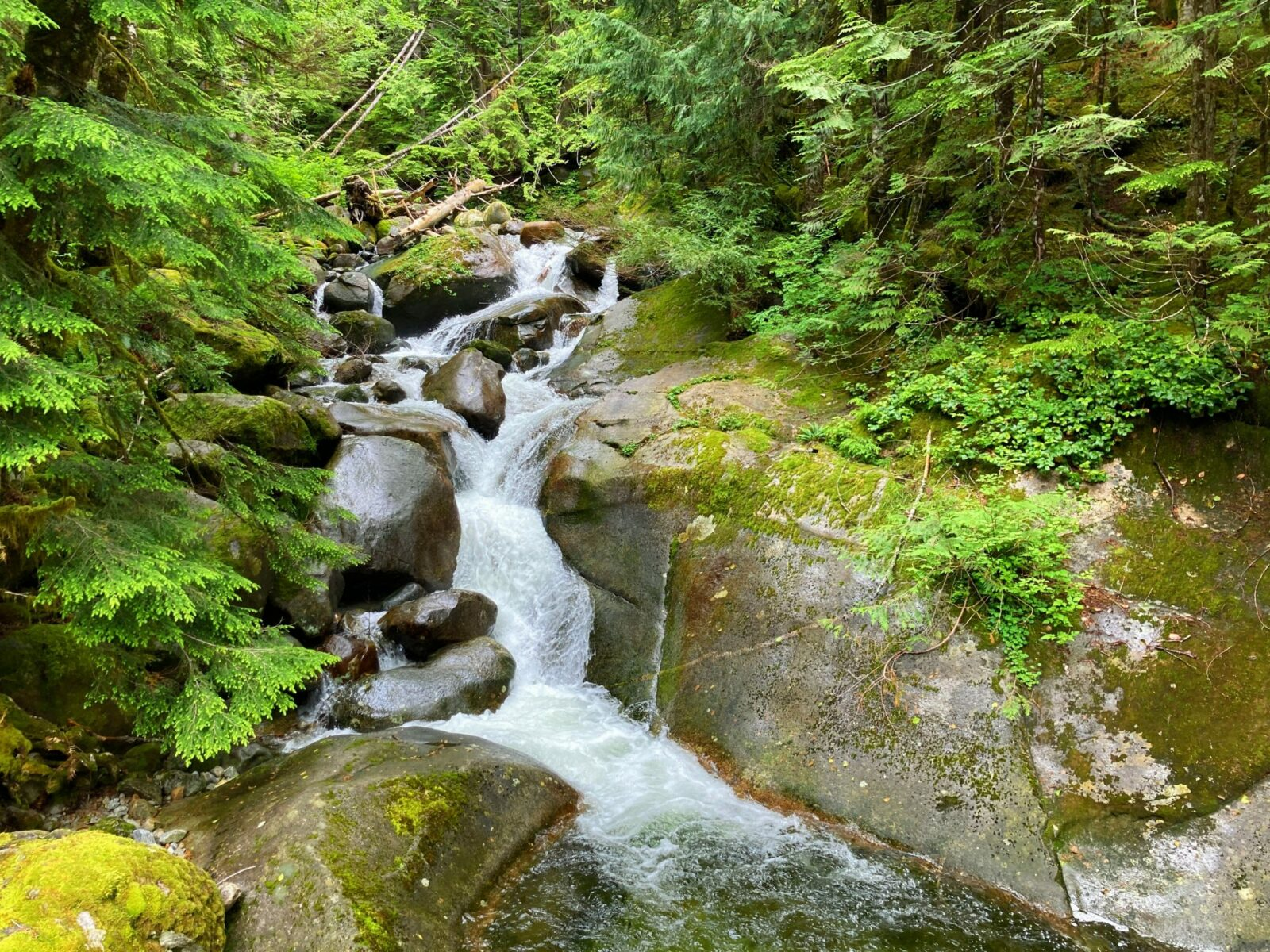 A mini waterfall over and between rocks and moss in an evergreen forest along the Snoqualmie Lake Trail to Otter Falls