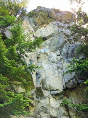 a vertical rock face in a forest, one of many along the Mt Washington trail near Seattle