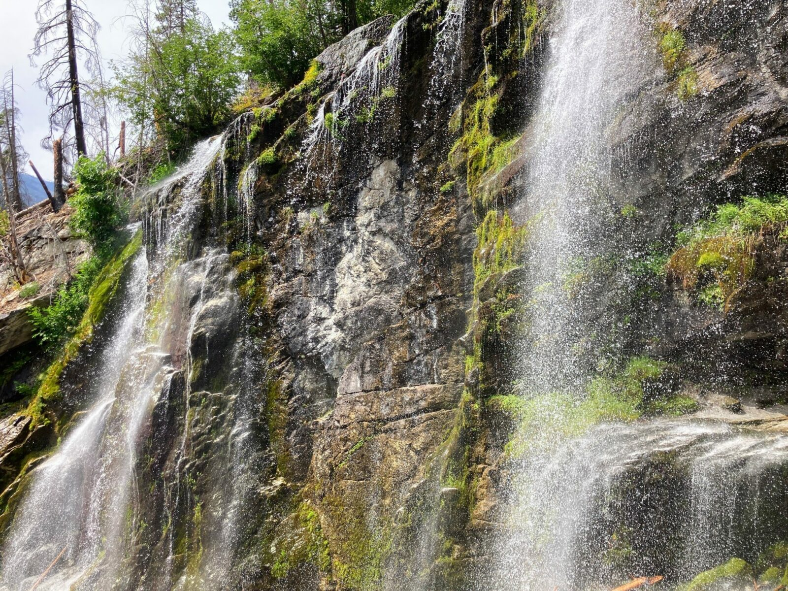 Multiple cascades of Silver Falls tumble down a vertical cliff with occasional moss