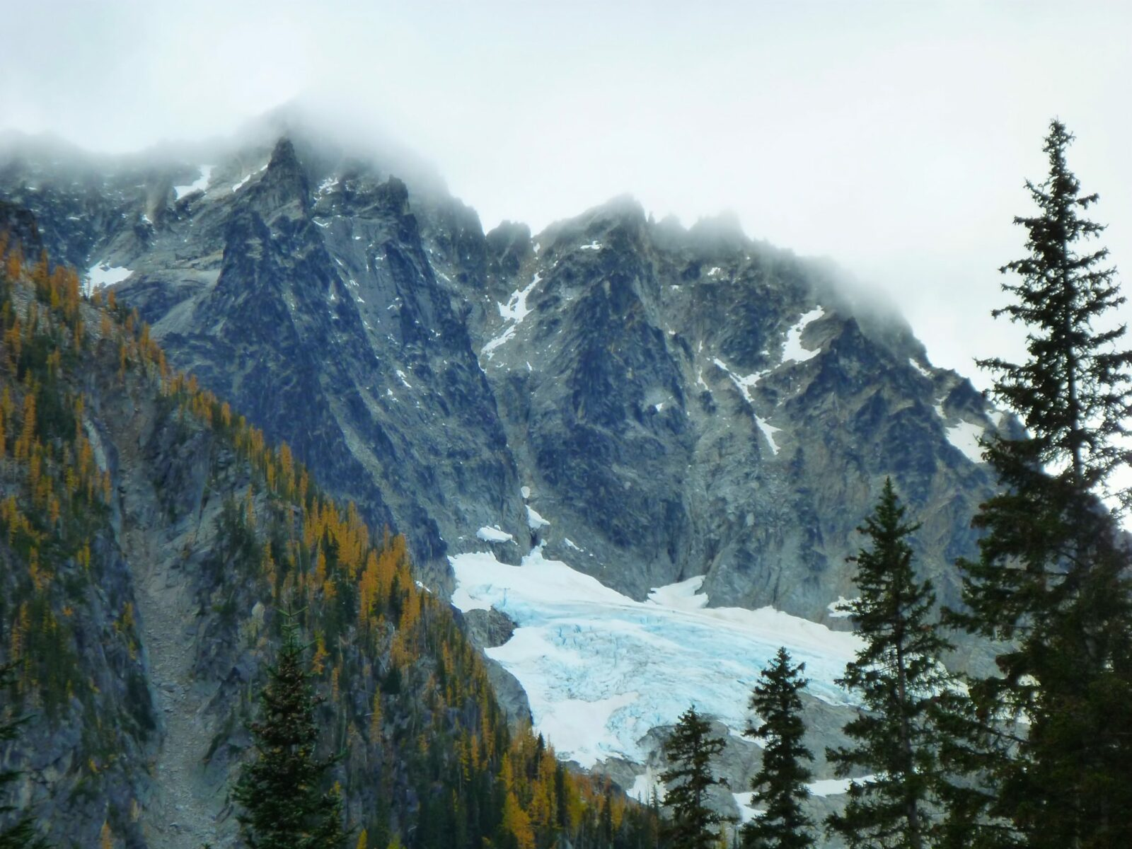 A glacier clings to the side of a high mountain whose top is lost in the clouds. In the foreground are golden larches and evergreen trees.