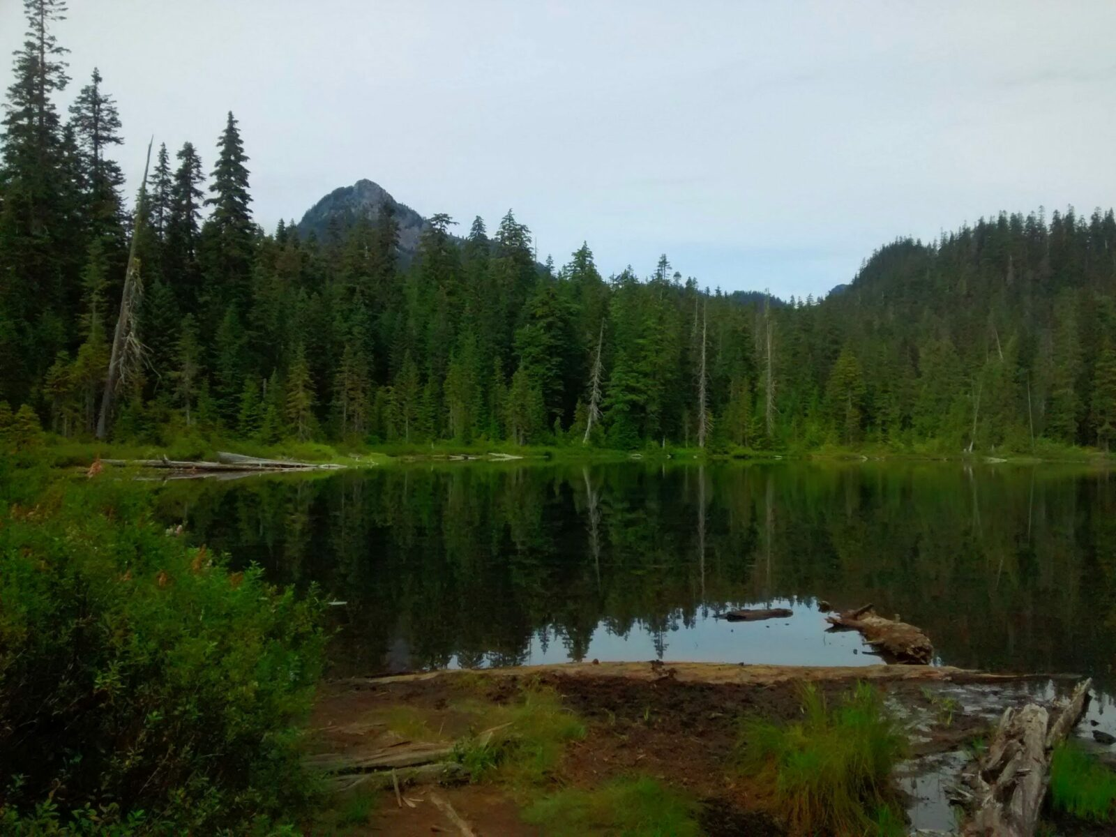 An alpine lake surrounded by evergreen trees. There are a couple of higher mountains visible in the distance