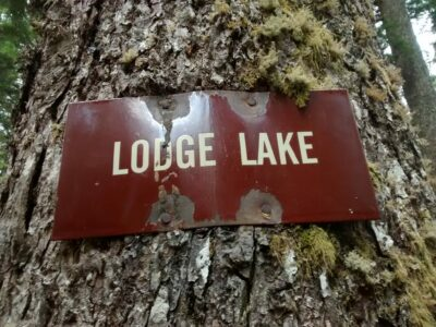 """A brown sign reading """"Lodge Lake"""" nailed to a tree"""