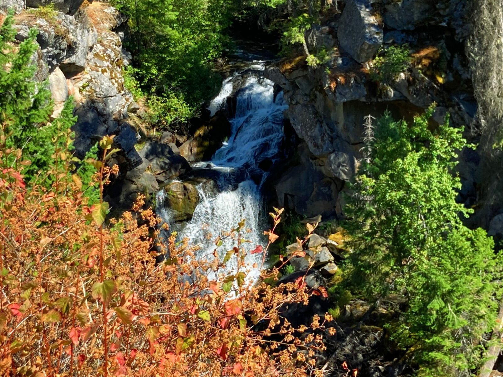 A waterfall tumbles over rocks with some green trees and red and brown bushes surrounding it
