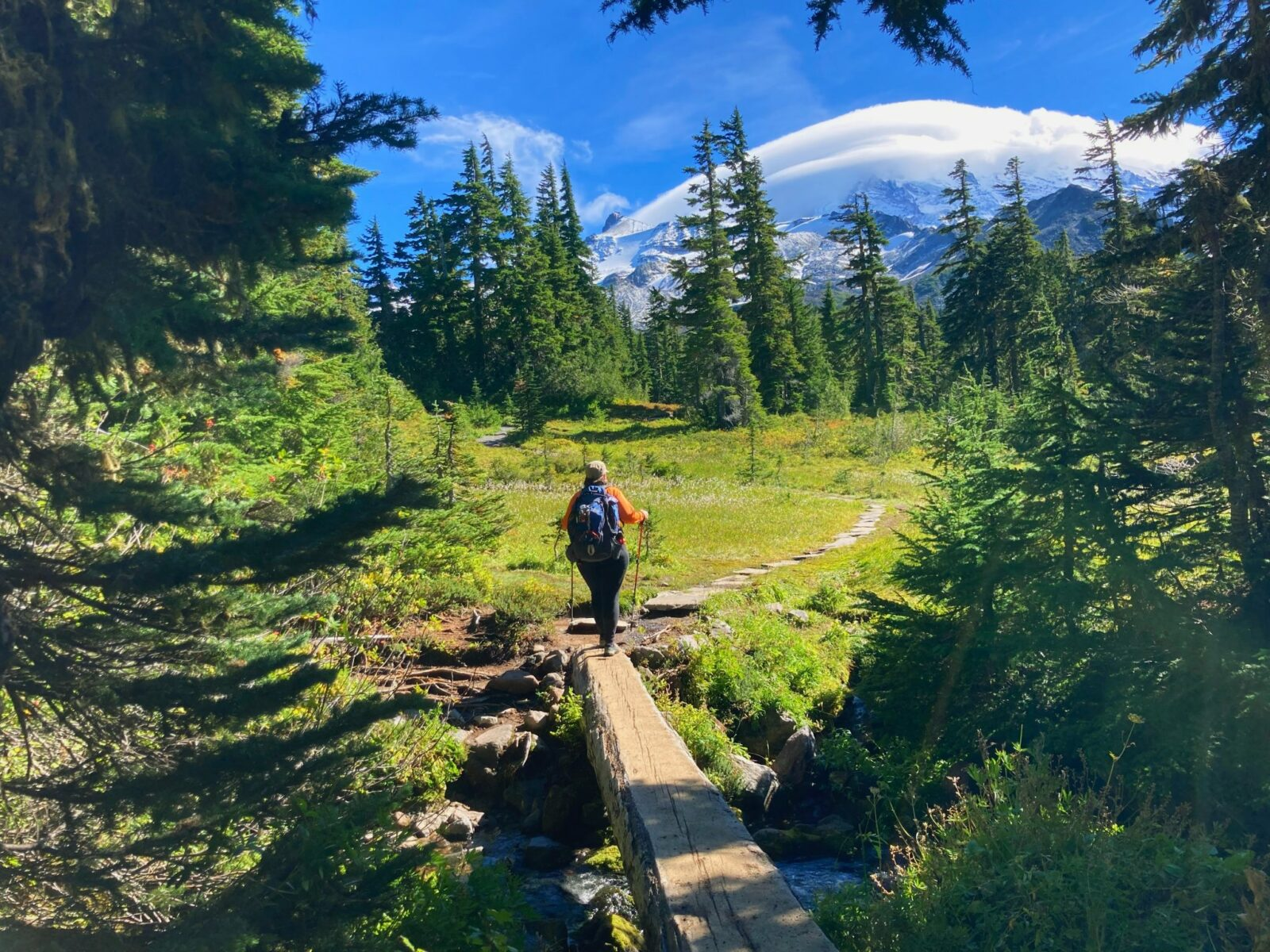 A person with a backpack and hiking poles walking off a log bridge and onto a trail through a wildflower meadow in Spray Park. There are evergreen trees surrounding the meadow and Mt Rainier in the distance has clouds around it's summit.