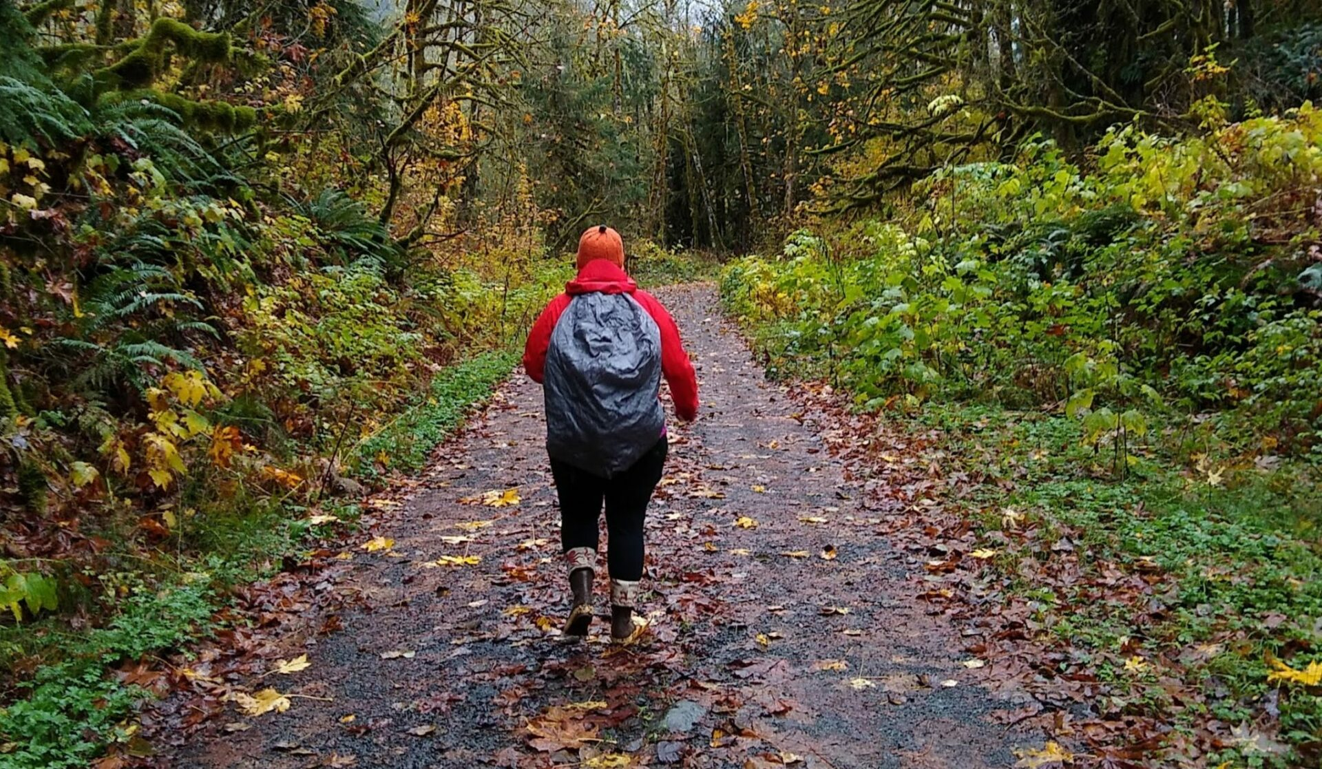 A person on a wet hiking trail in the rain. The person is wearing rubber boots, black leggings, a red rainjacket and an orange hat as well as a backpack with a rain cover. They are walking on a gravel trail with undergrowth and trees on each side