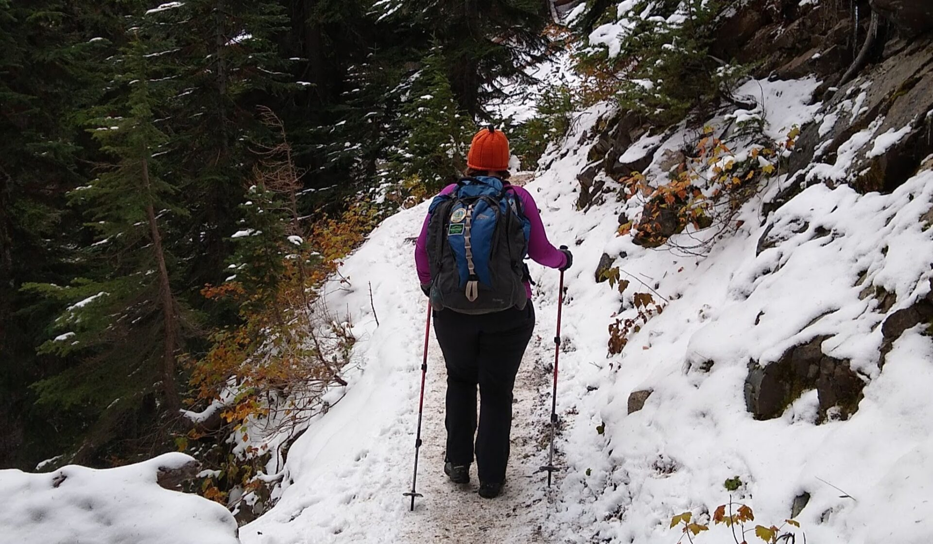 A person on a snowy trail walking away from the camera, wearing an orange hat, purple shirt, black pants and a blue backpack. The person is using trekking poles.
