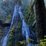 Two sides of a high waterfall coming over a moss and fern covered cliff through the forest into the Boulder River
