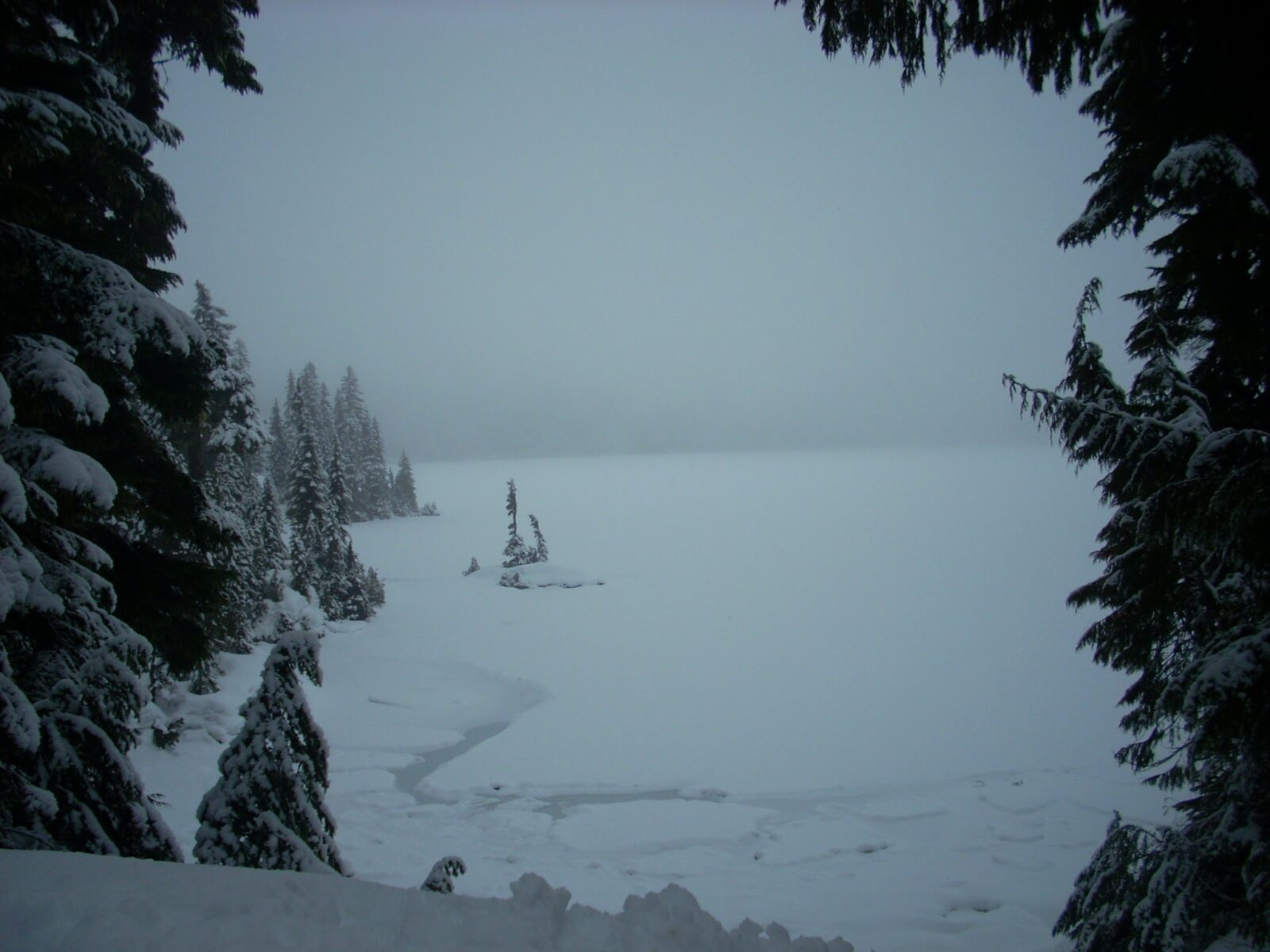 Frozen Mowich Lake in Mt Rainier National Park on a dark and foggy day. The lake is framed by evergreen trees covered in snow.