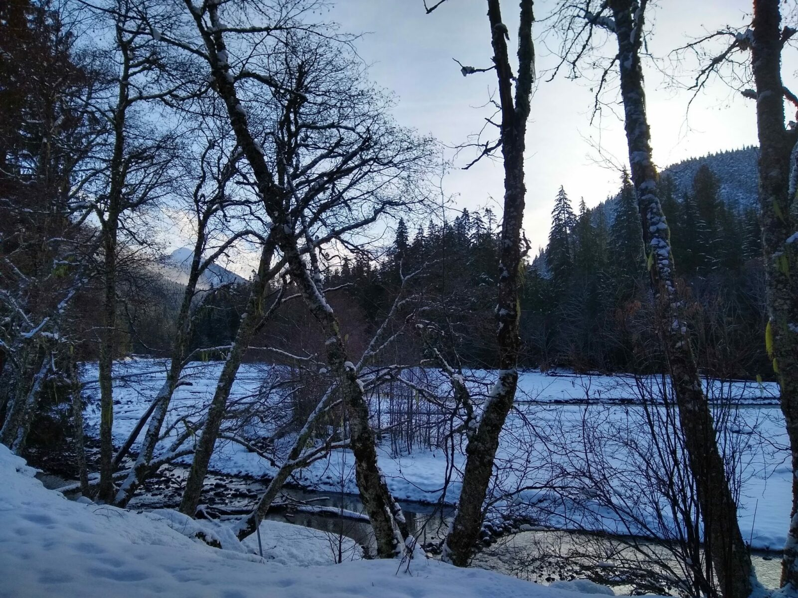 A partially frozen river surrounded by snow and winter trees with a light dusting of snow. It is dusk and there are higher mountains visible in the distance