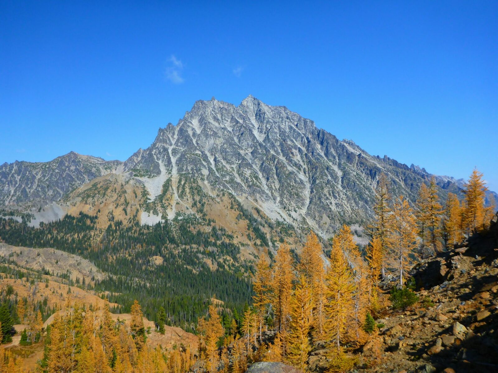 A high granite mountain against a blue sky. Golden larch trees frame the mountain in the foreground on one of the best larch hikes in washington, Lake Ingalls