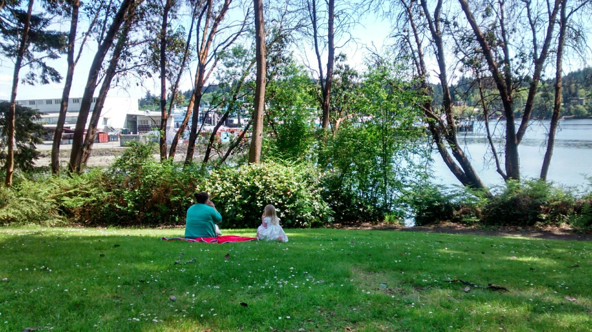 A woman and a child sitting on a picnic blanket on the grass. There are trees around them and a shoreline beyond.