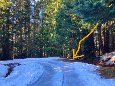 An icy closed road on the trail to Franklin Falls in winter. The road is surrounded by forest. A yellow arrow points to the position of the trail, which is very hard to see in winter