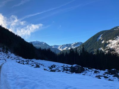 A snowy open landscape with distance snowy and forested mountains on a blue sky day