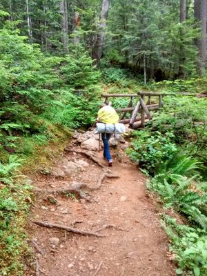 The Lena Lake Trail through the forest. The trail has some roots and is approaching a log bridge. There is a backpacker about to cross the bridge