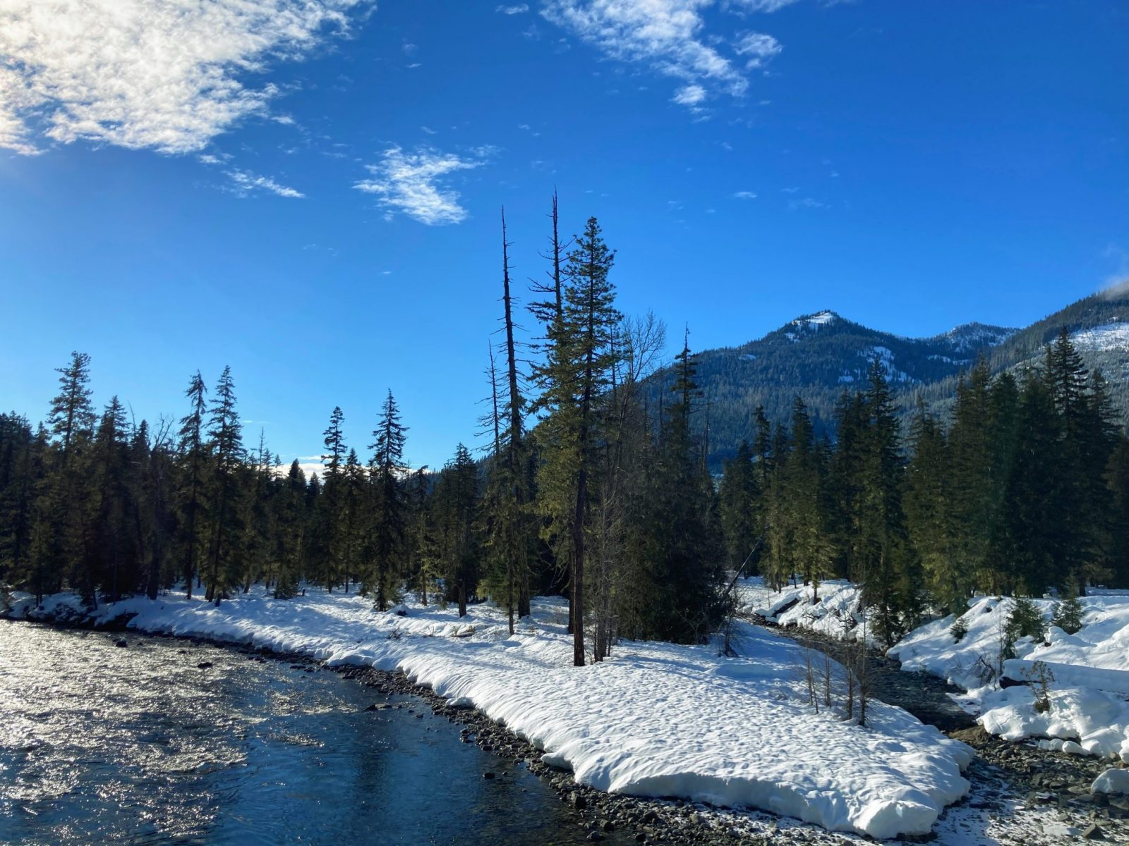 A sunny blue sky day at the salmon la sac sno park. There is a river with snow and forest around it, and distant forested mountains.
