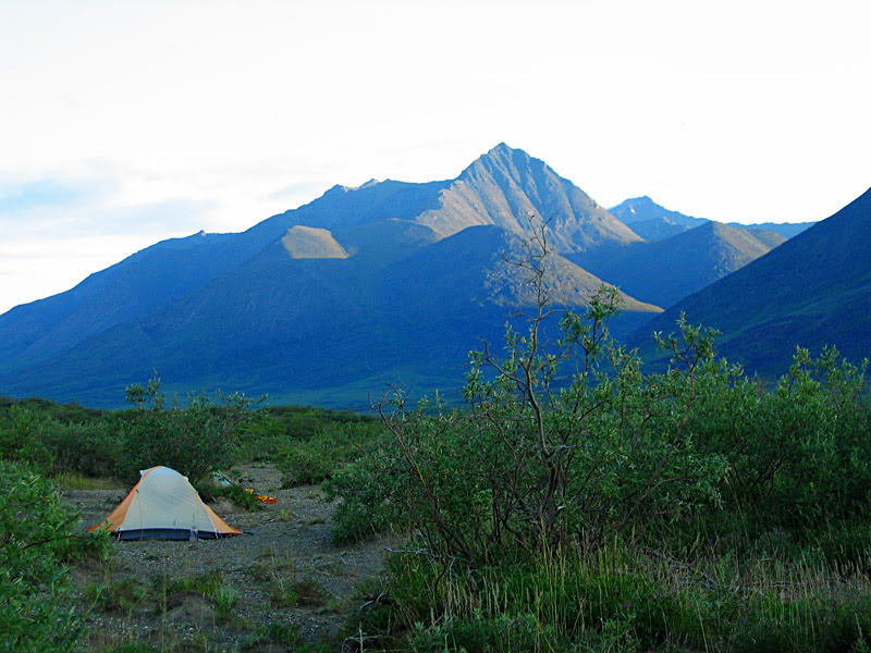 Distant bare mountains and willows in the foreground around a yellow and white tent camping in Alaska in Gates of the Arctic National Park
