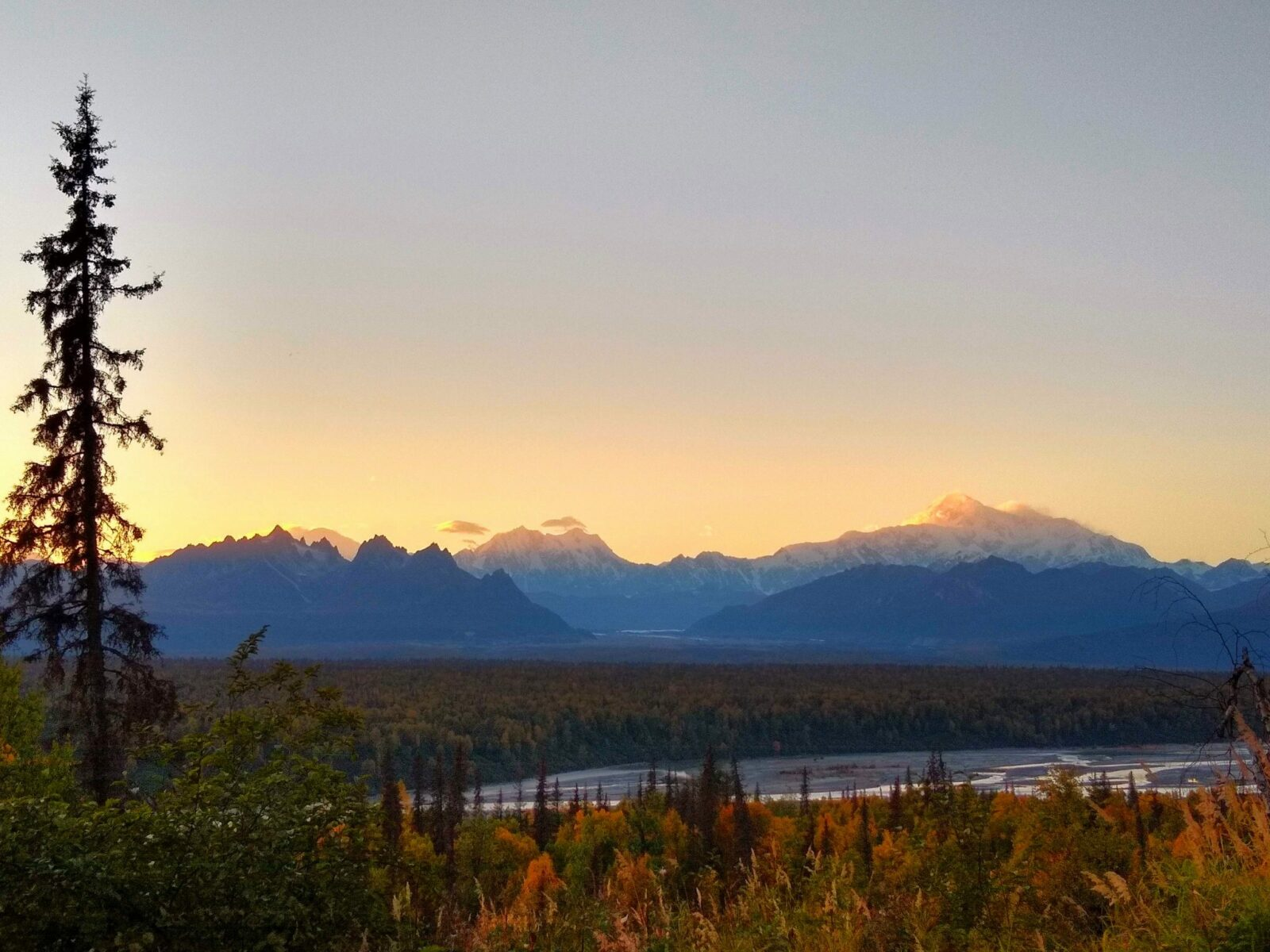 camping in alaska at denali state park with views of denali and other mountains of the alaska range at sunset. The Susitna river is in the distance and evergreen trees and orange fall shrubs are in the foreground