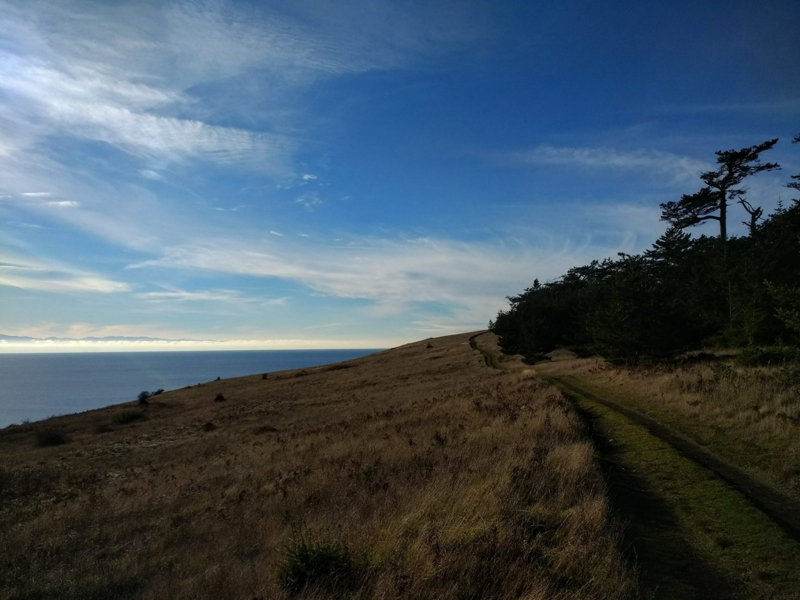 An excellent spring hike near Seattle, the Mt Finlayson trail on San Juan Island. The trail is wide, like an abandoned road, and crosses a grassy field between a forest and the water below.